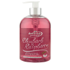 Astonish Rhubarb and Raspberry Antibacterial Handwash 500ml